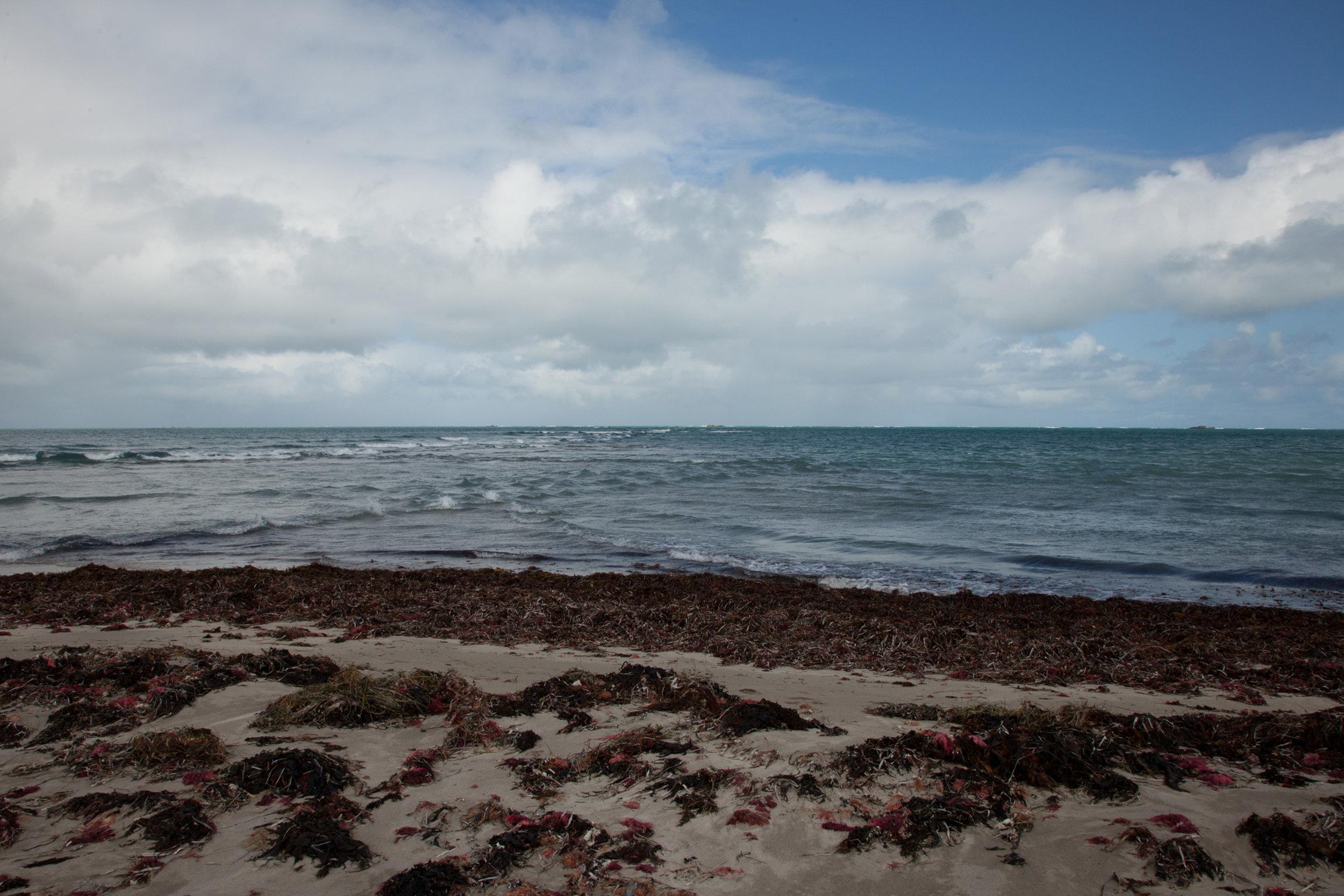 Plate 11: Sandbar extending from the tip of Tern Island.