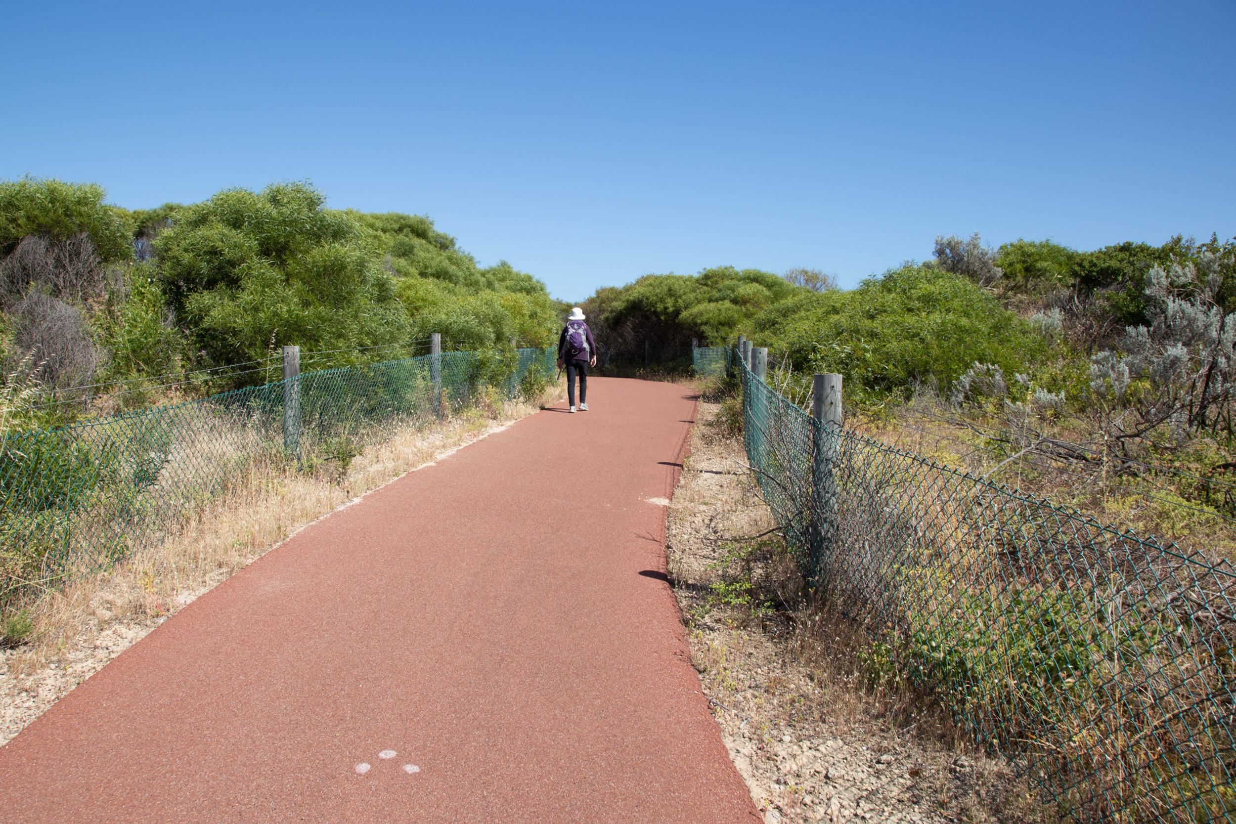Plate 2: Typical section of the path for the first part of the walk.