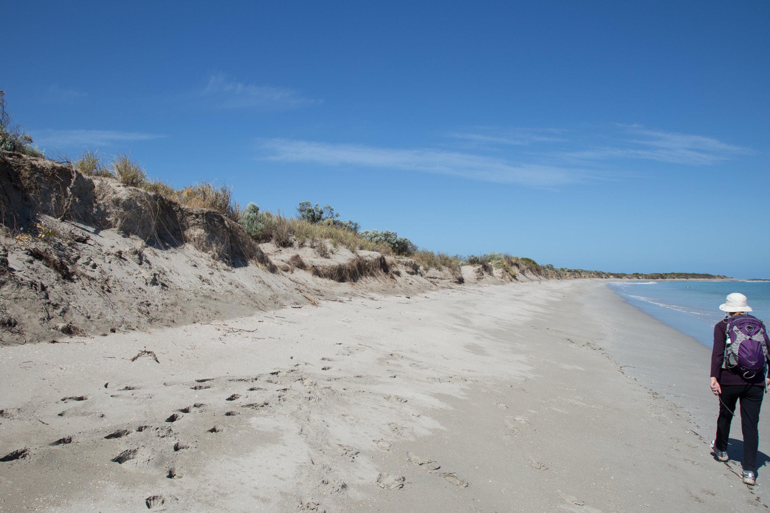 Plate 8: Eroding beach between the Resort and Becher Point.