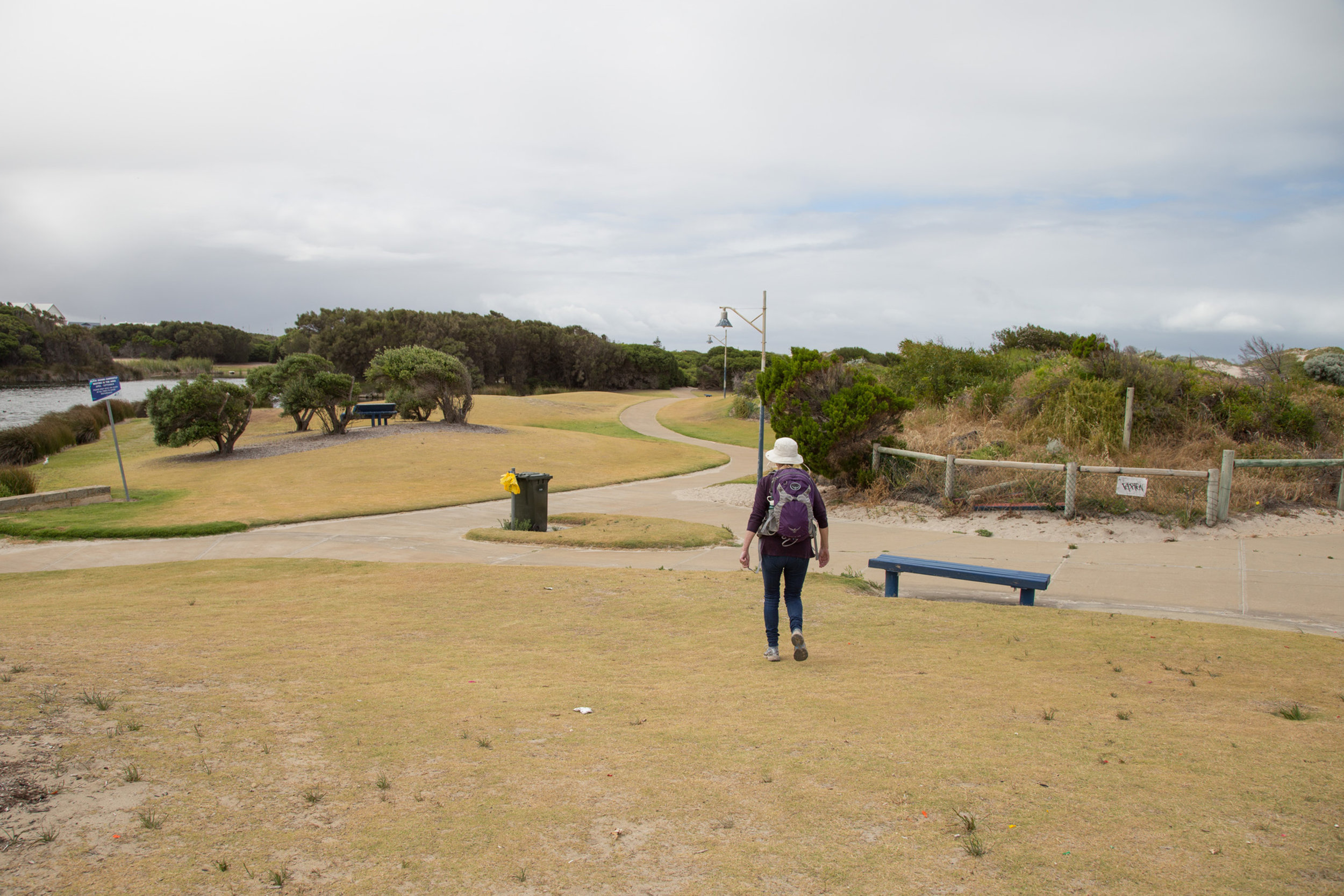 Plate 2: Concrete path passed an artificial wetland and grassed area within the foreshore reserve.