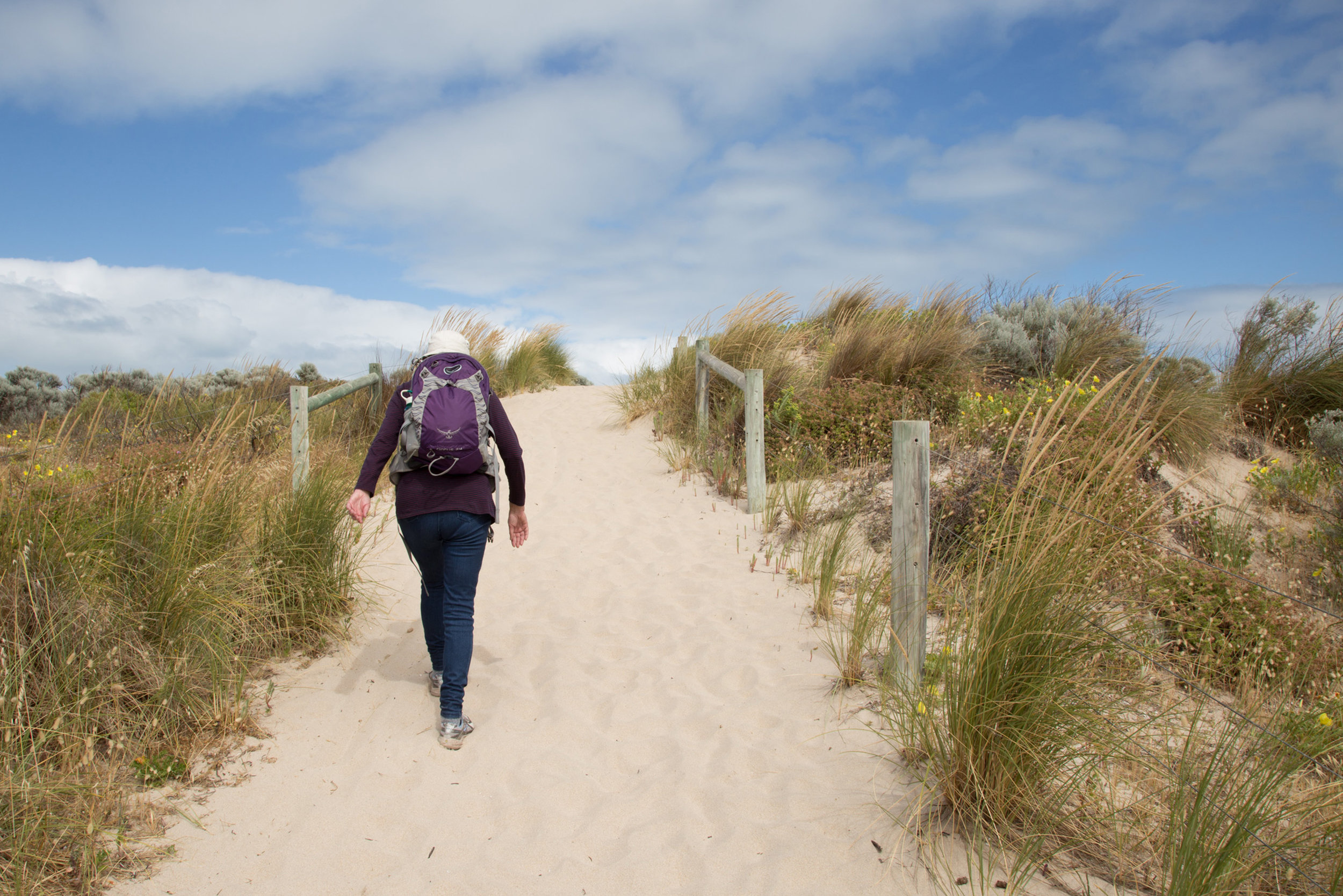 Plate 6: Sand track to the beach from the look out near the south western end of the Secret Harbour Beach carpark.