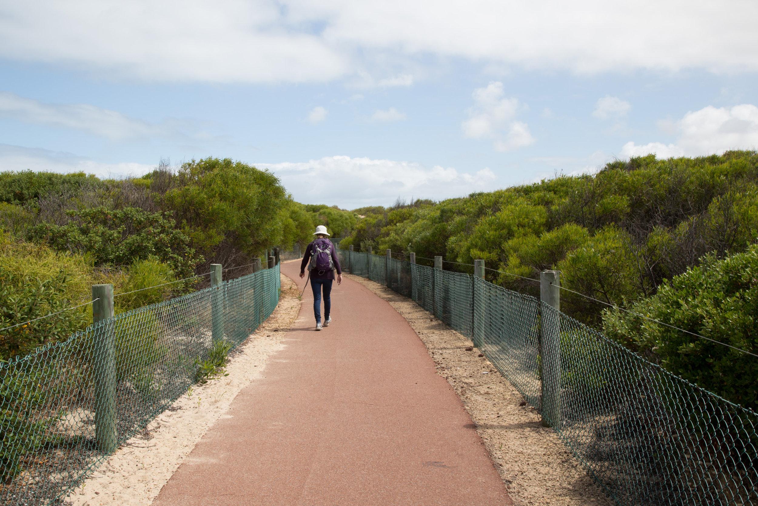 Plate 12: Path through Golden Bay.