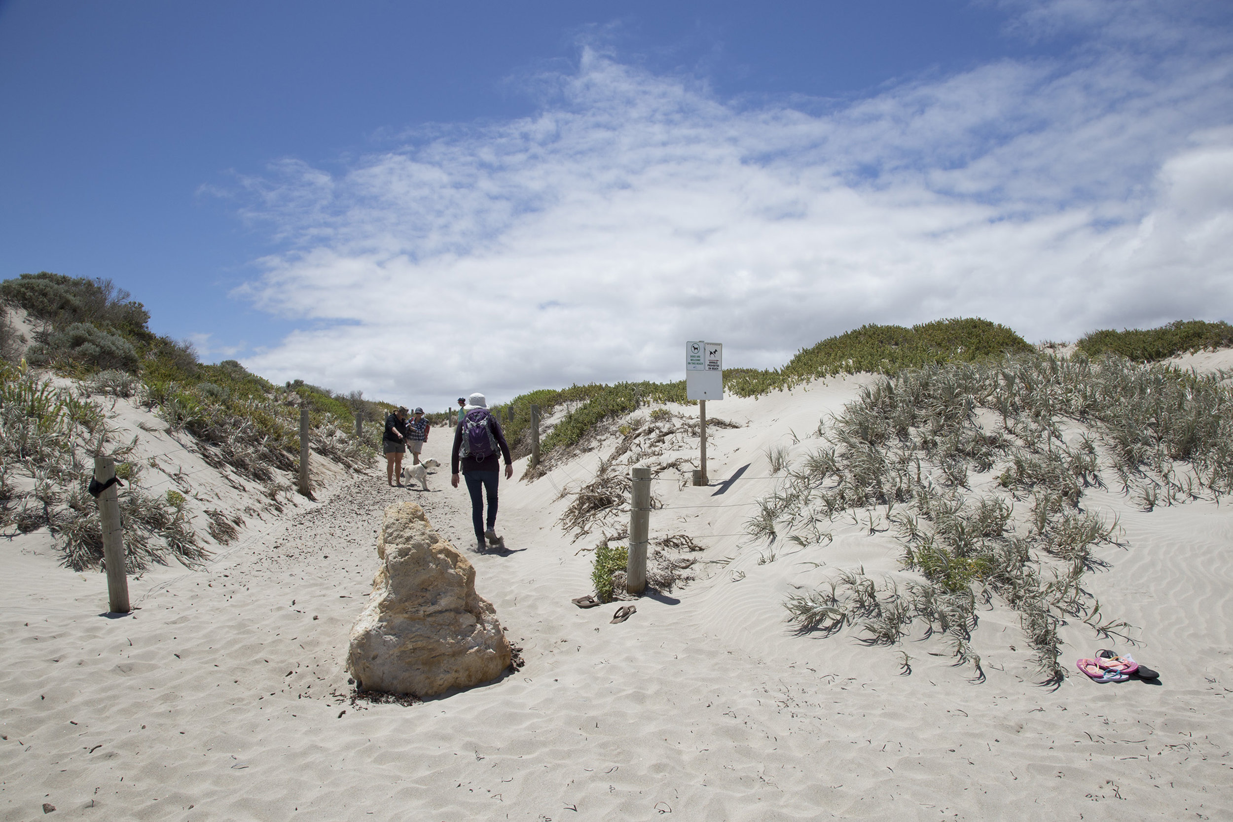Plate 13: Sand track leading to the capark at the end of Siracusa Court – the start of the walk.