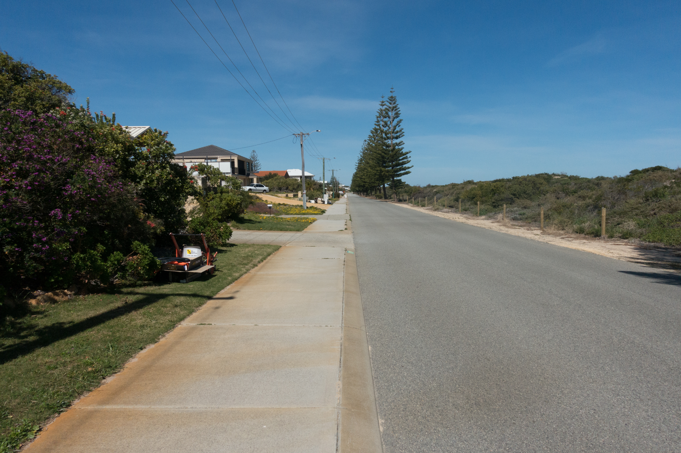 Plate 5: The path that runs parallel to Foreshore Drive
