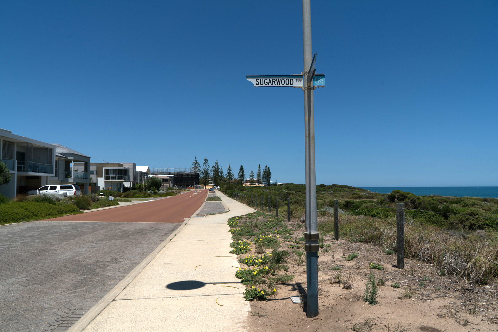 Plate 1: The path down Boardwalk Boulevard