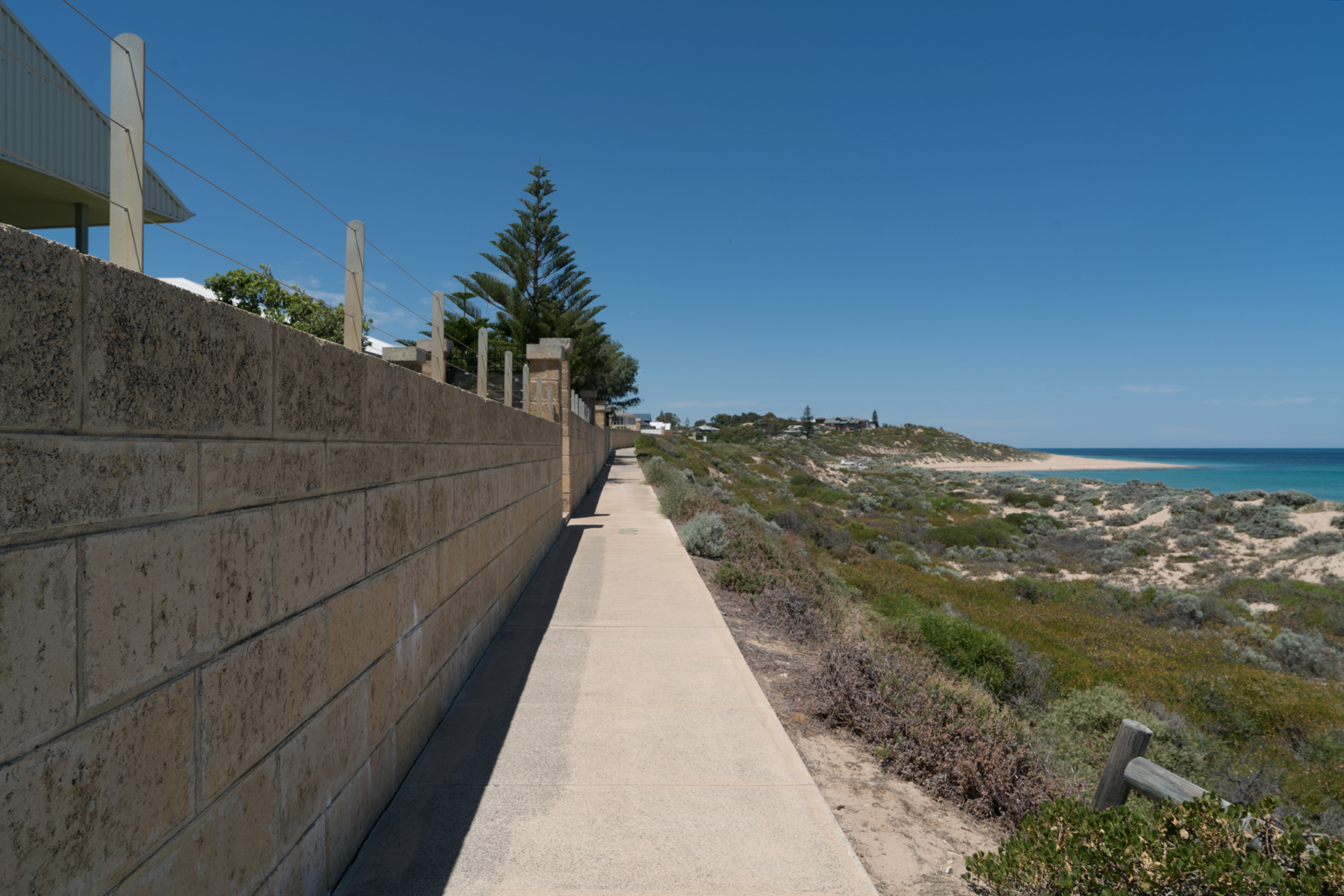 Plate 6: The path at the edge of the foreshore reserve in front of a row of houses