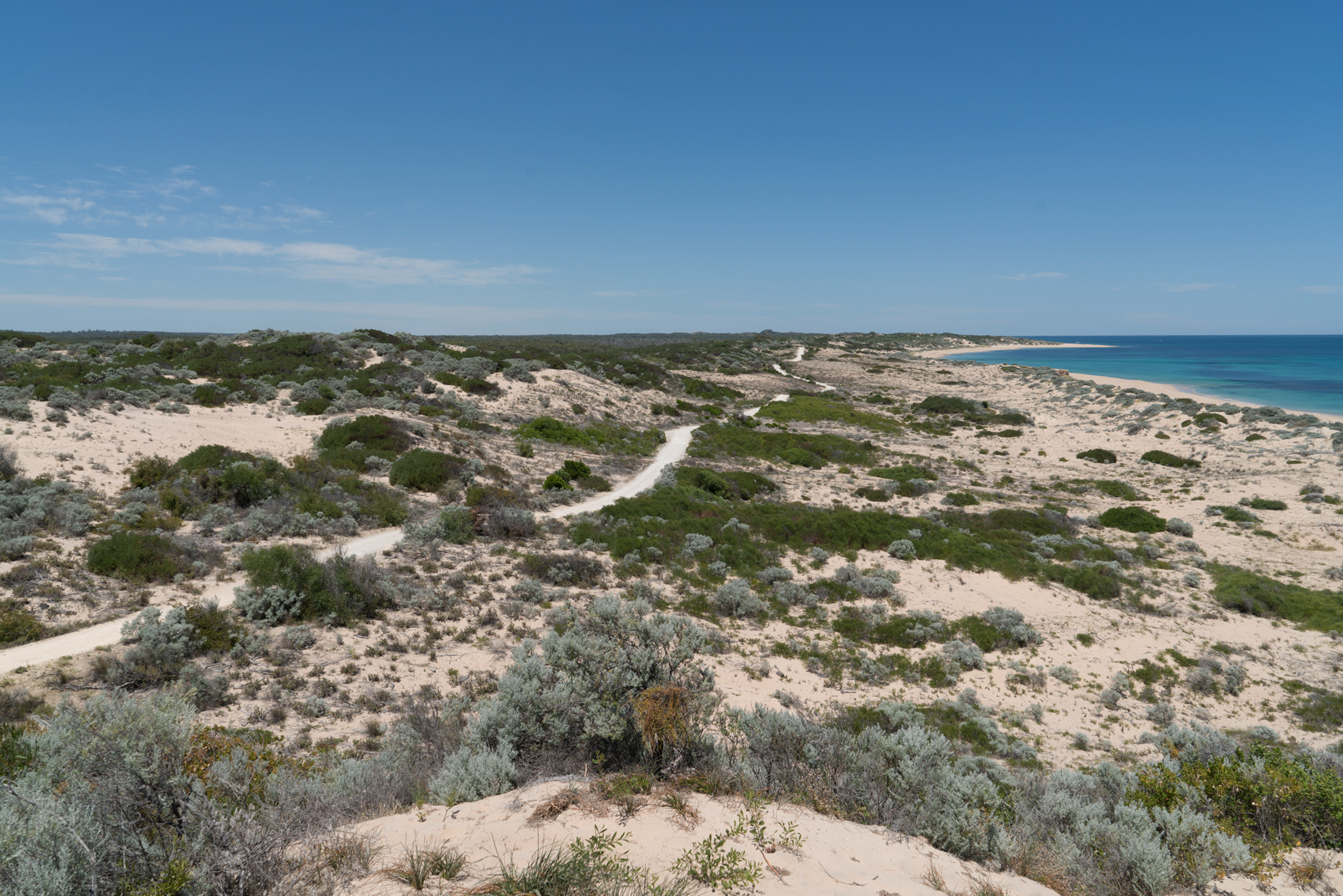 Plate 4: View of limestone track to Tims Thicket Beach form the lookout