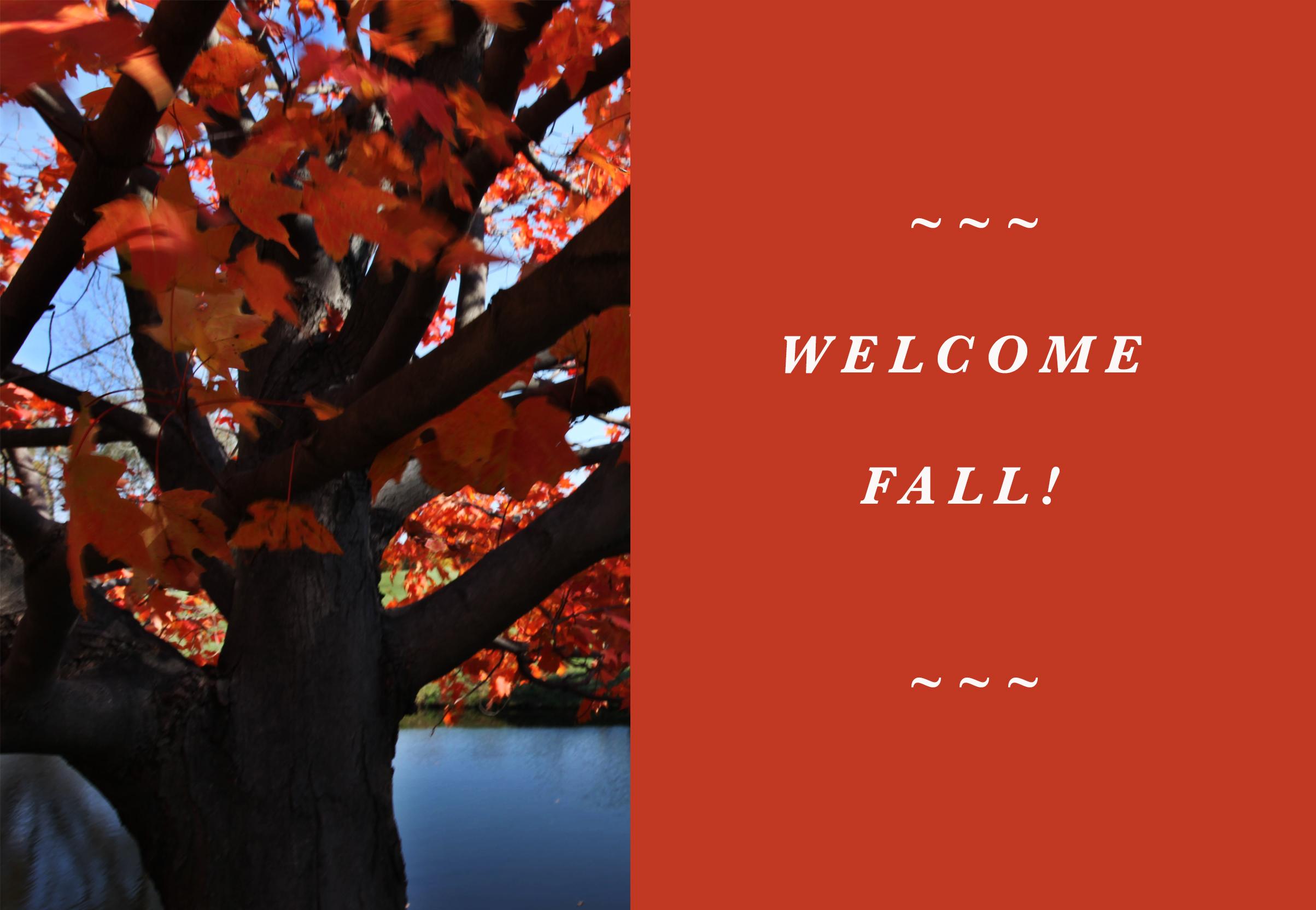 welcomefall!