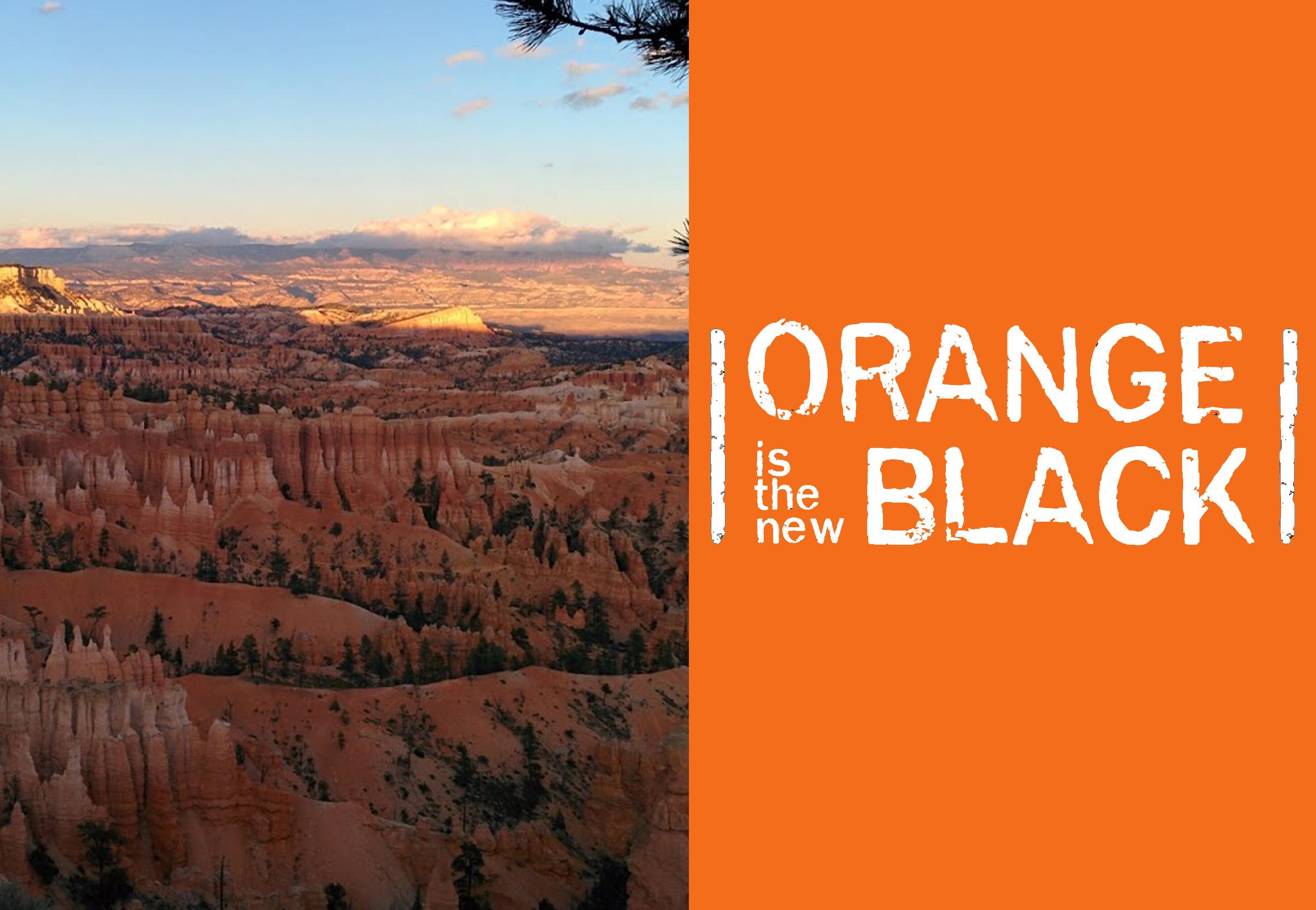 blog-title-orange