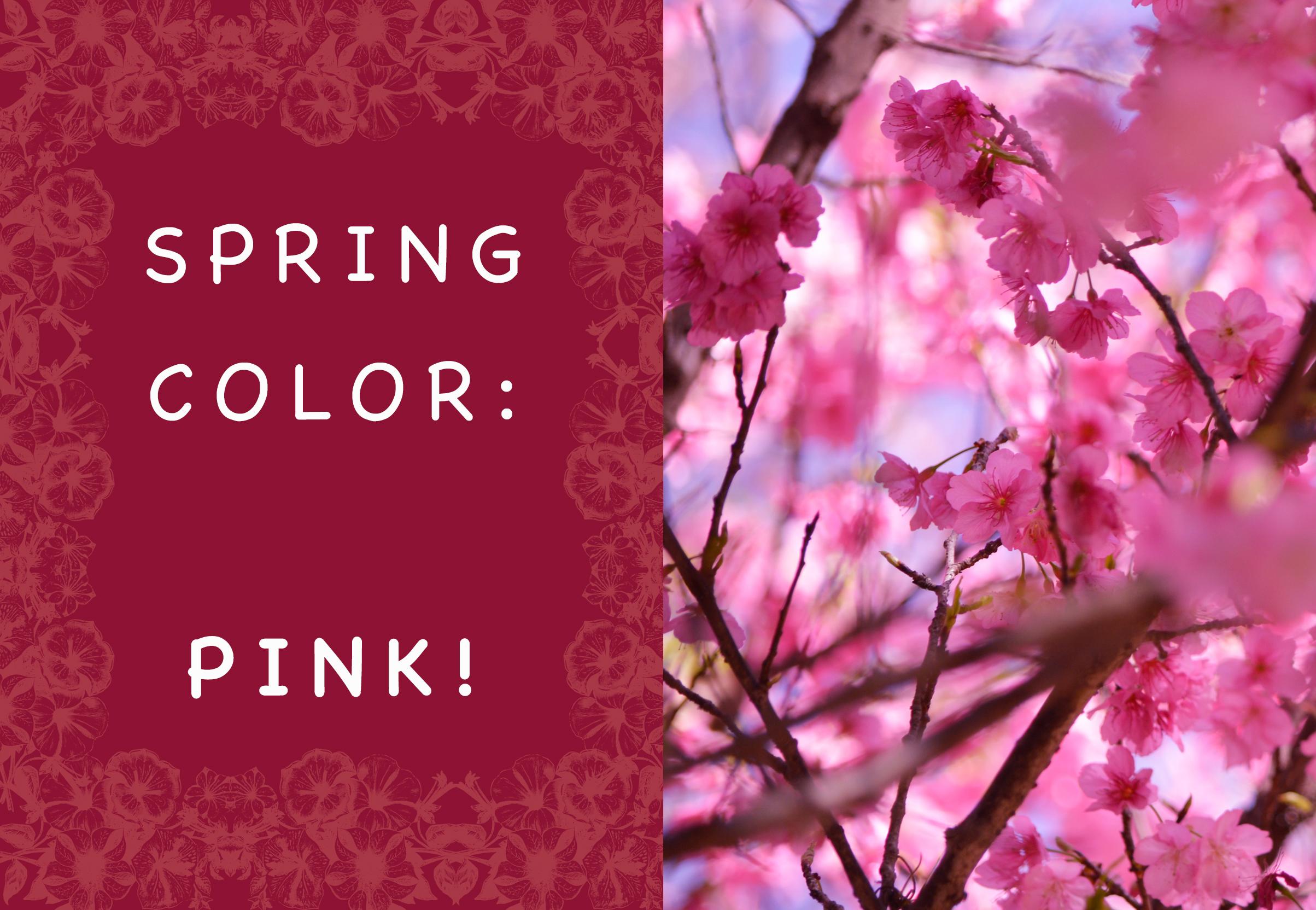MaisonKoduZen-blog-spring2017-pink.jpg