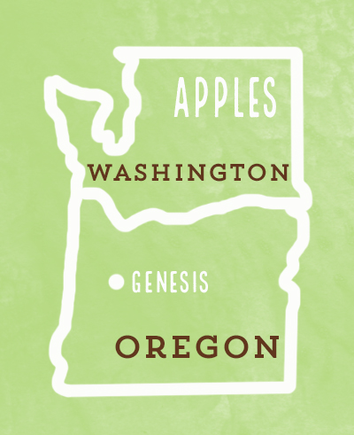 We source as locally as possible. 99% of our apples come from Oregon and Washington.
