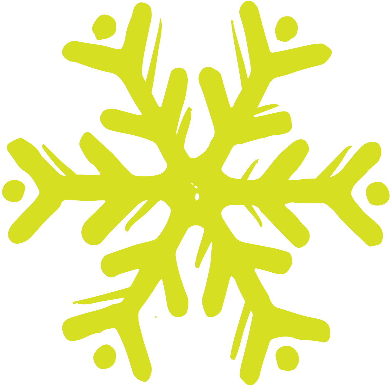 Snow flake.png