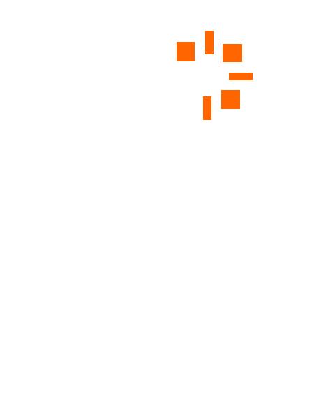 BOMB ICON WHITE-ORANGE.png