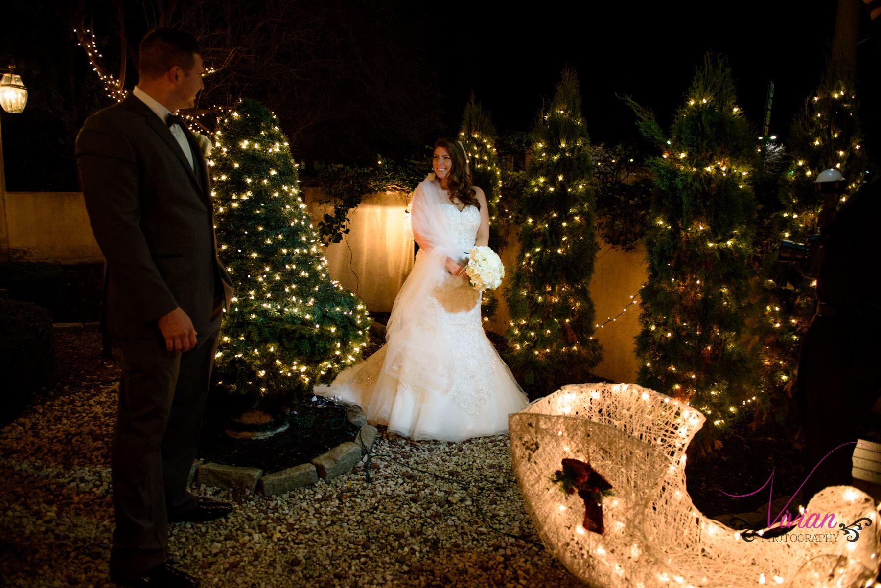 bride-groom-posing-in-christmas-tree.jpg