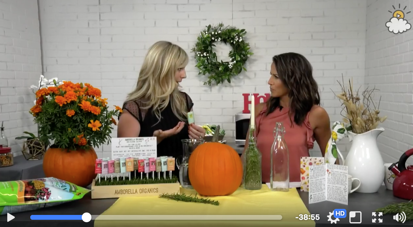 Click on the image above to watch the full interview & see our holiday DIY!