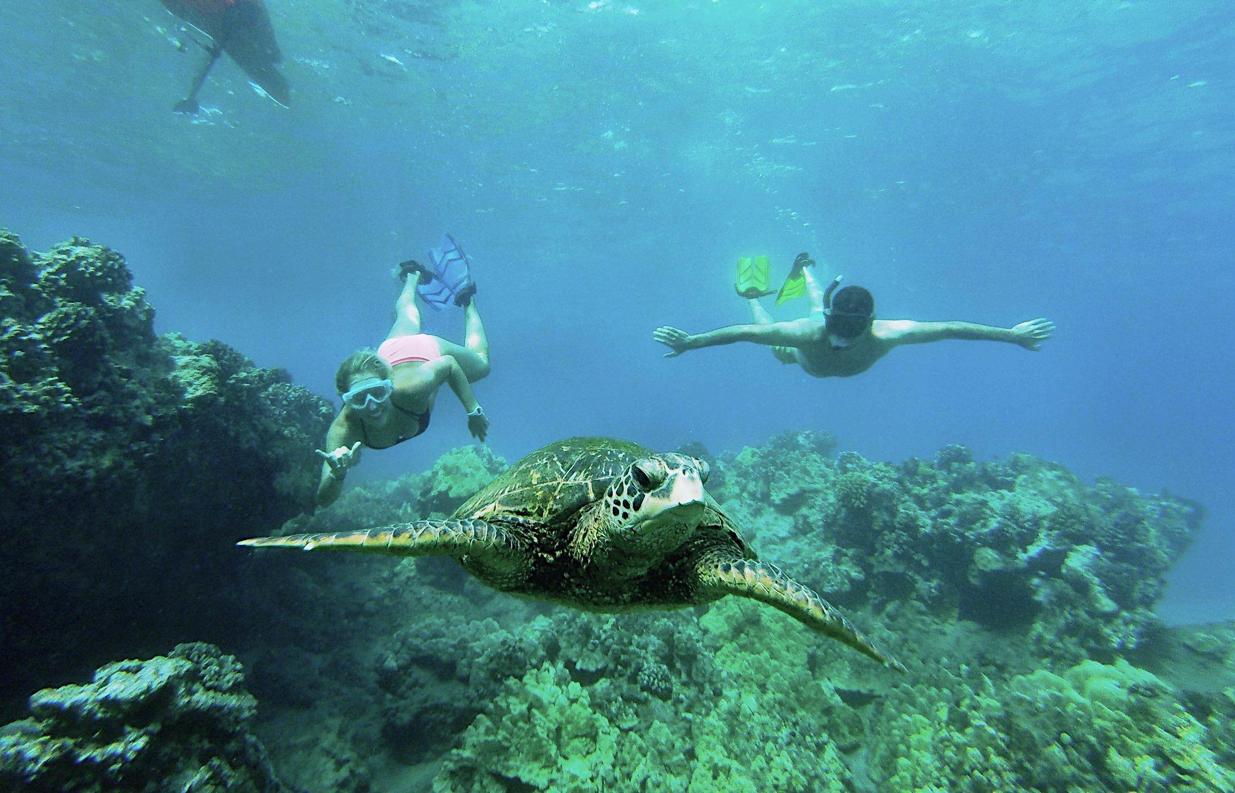 Ocean Lesson