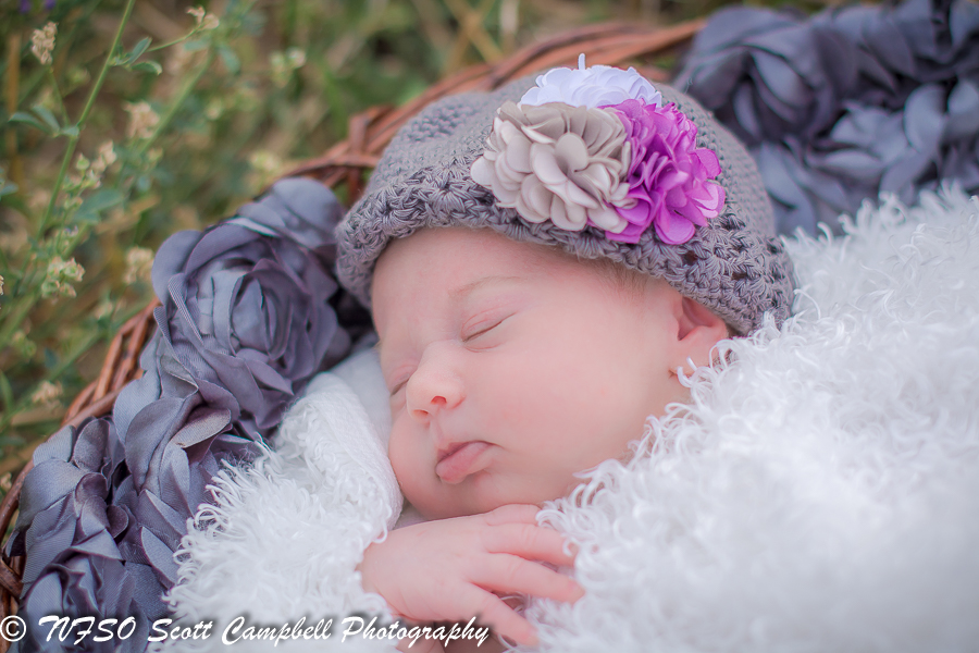 professional baby photography, photography websites, best photography websites, best photography websites, professional maternity photos, professional pregnancy pictures, professional maternity photographer, baby family photography