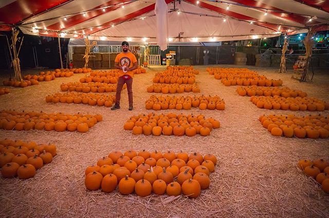Opening day is in exactly ONE WEEK! If you are in the La Jolla area come visit us at 801 Pearl Street or if you are in the West Palm Beach area come visit us at 419 Lakeview Ave. All information can be found on our website at www.mrjackolanternspumpkins.com