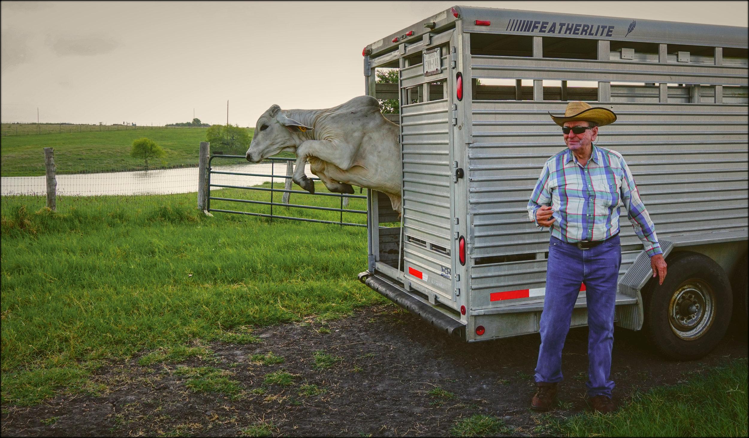 6th Annual Farmer as Artist Show - Photo by Christian Sacra