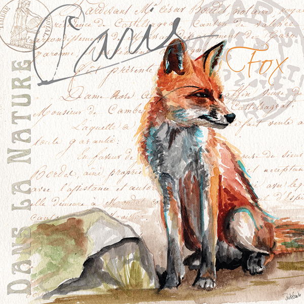 danslanature_fox.jpg