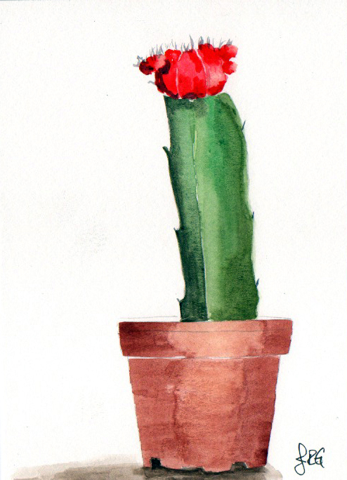 cactus_JRG_3.jpg