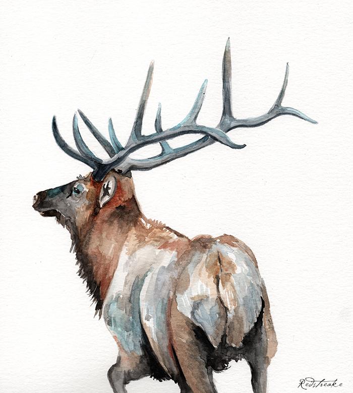 redstreake_reindeer3.png