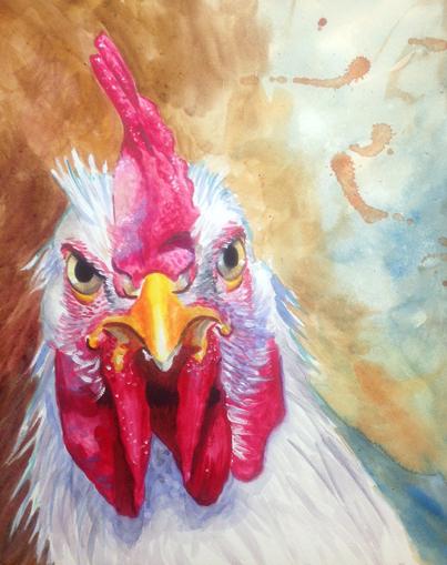 rooster_attitude.jpg