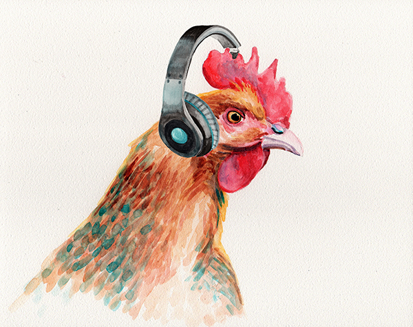 rooster_beats_lowres.jpg