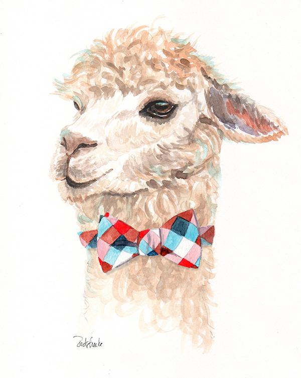 alpaca_bowtie_lowres.jpg
