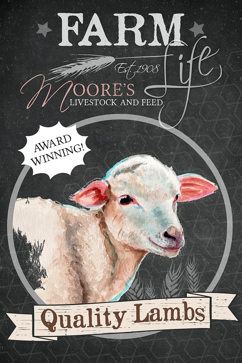 redstreake_farm_sheep.jpg