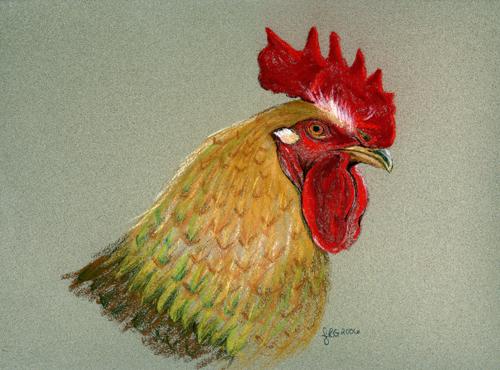 rooster2_lg.jpg