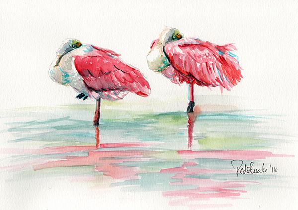 redstreake_flamingos_wc.jpg