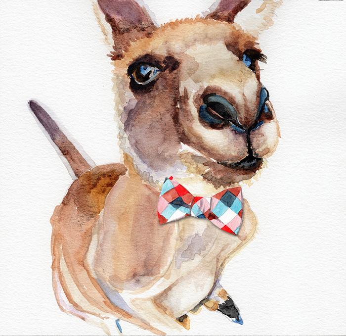 kangaroo_tie.jpg