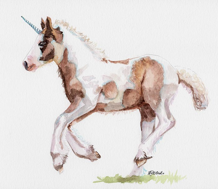 Unicorn Foal