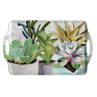 succulents-serving-tray.jpg