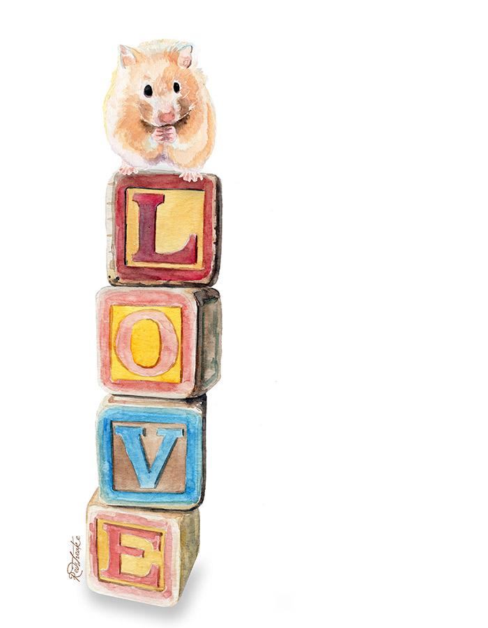 love_blocks_hamster_redstreake.jpg