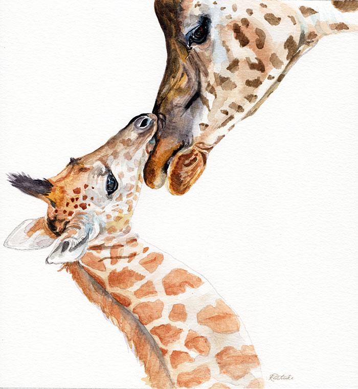 giraffefamily_redstreake.jpg