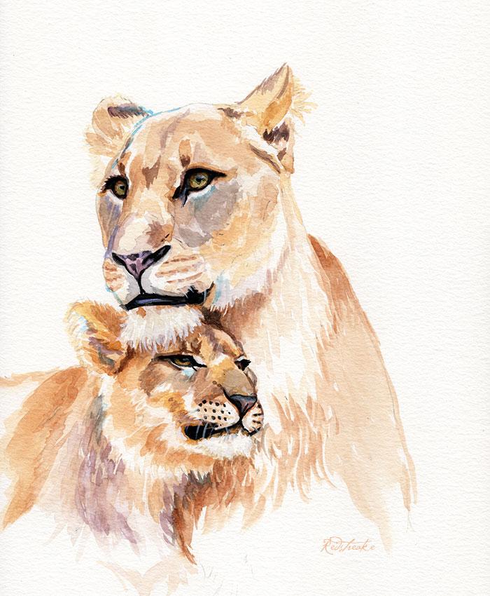 lionfamily_redstreake.jpg