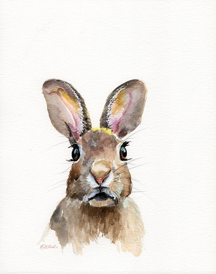 bunny_forward_lowres.jpg