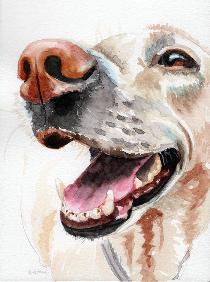 laughingdog2_redstreake.png