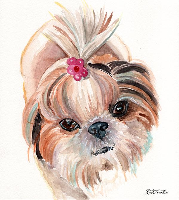 dogwithflowerinhair_redstreake.jpg