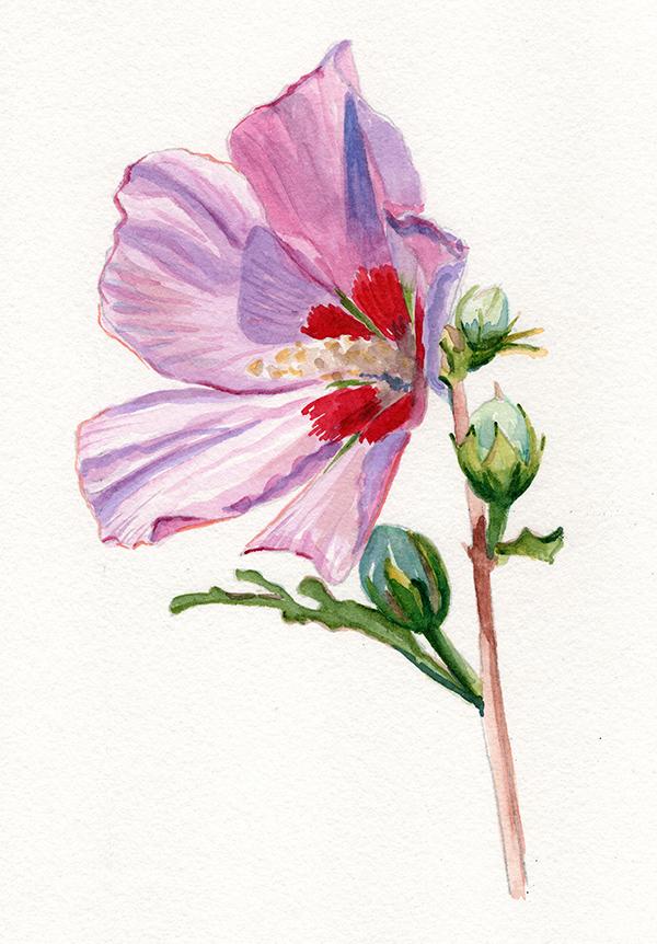 flowerclass2.jpg