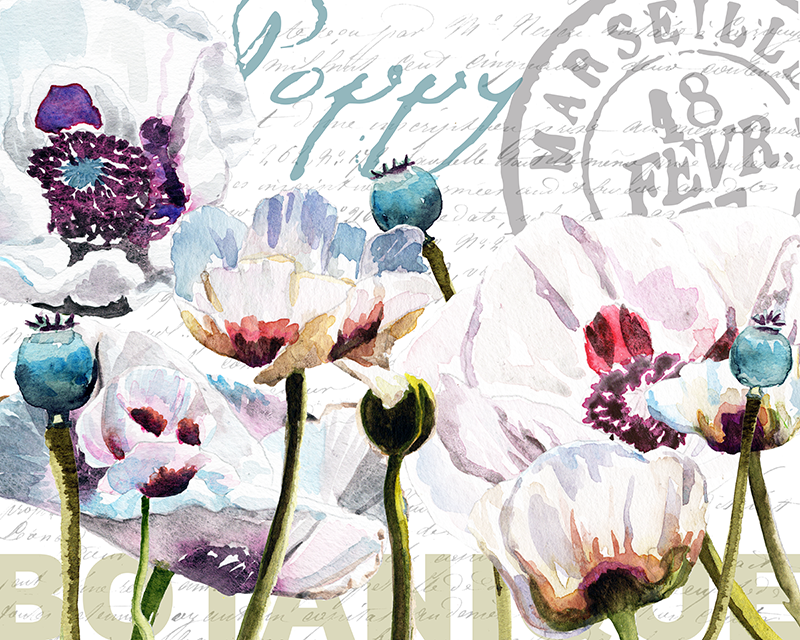 tulips_2018_collage.png