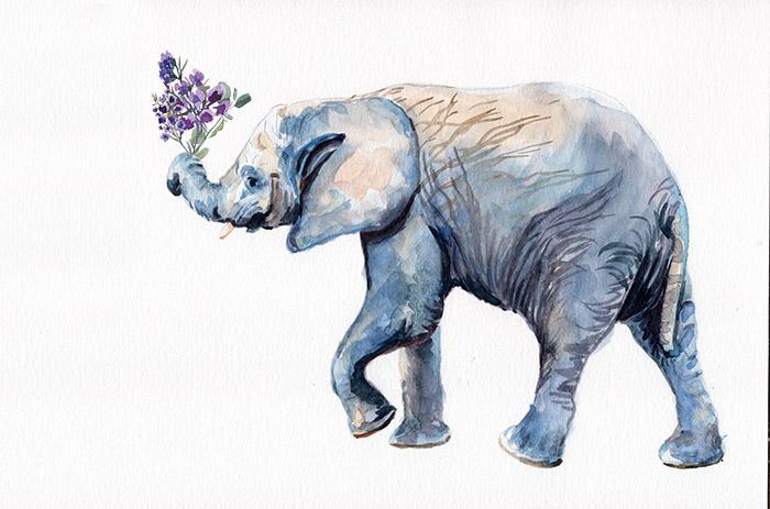 elephant_flowers.jpg