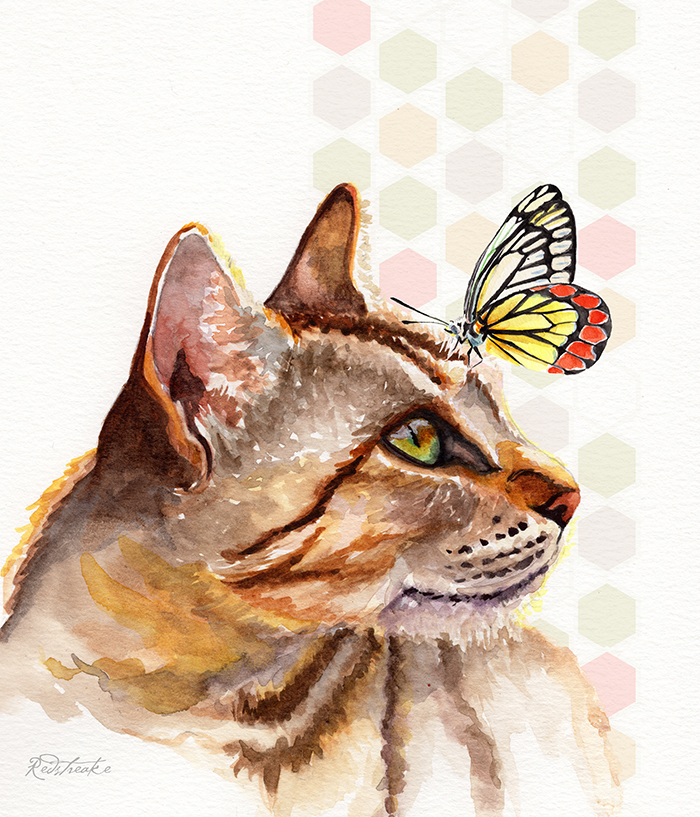 tancatgreeneyes_butterfly_redstreake.jpg