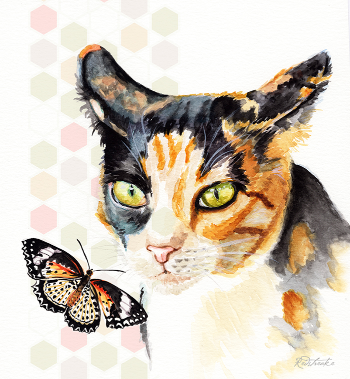 tortiCat_butterfly_redstreake.jpg
