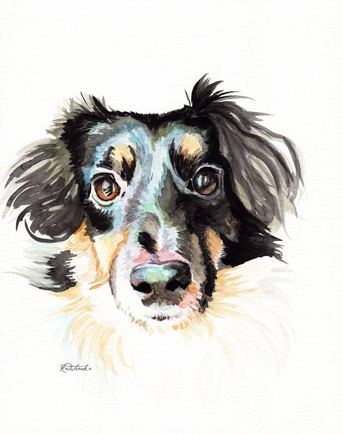 gabbydog.jpg
