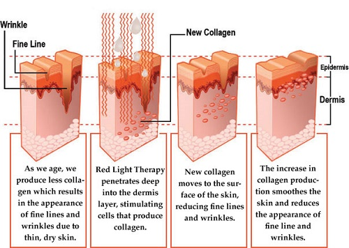 7 colors Bio light can solve stubborn skin issues