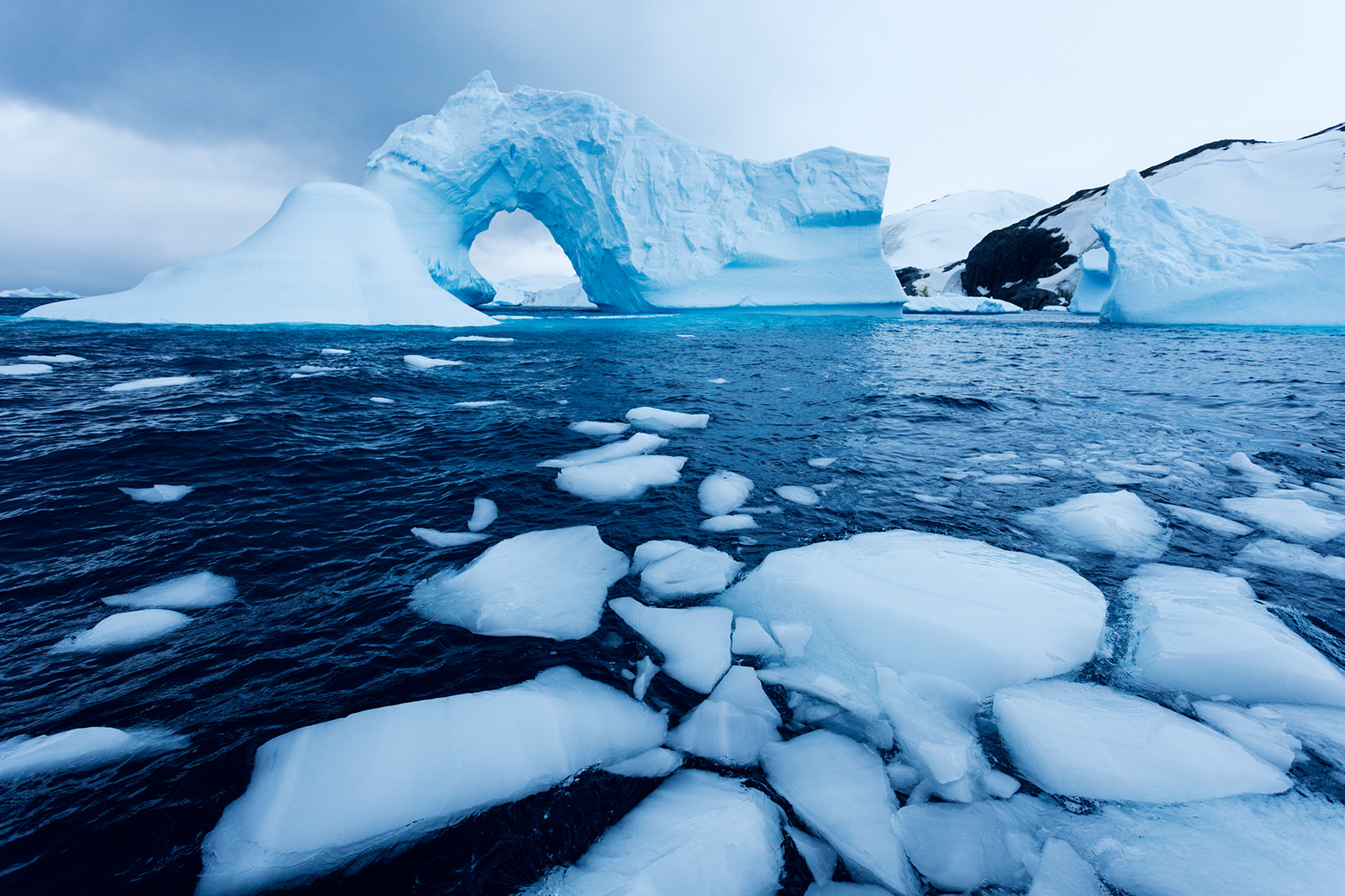 Icebergs Can Be Green, Black, And Even Rainbow - Scientific American