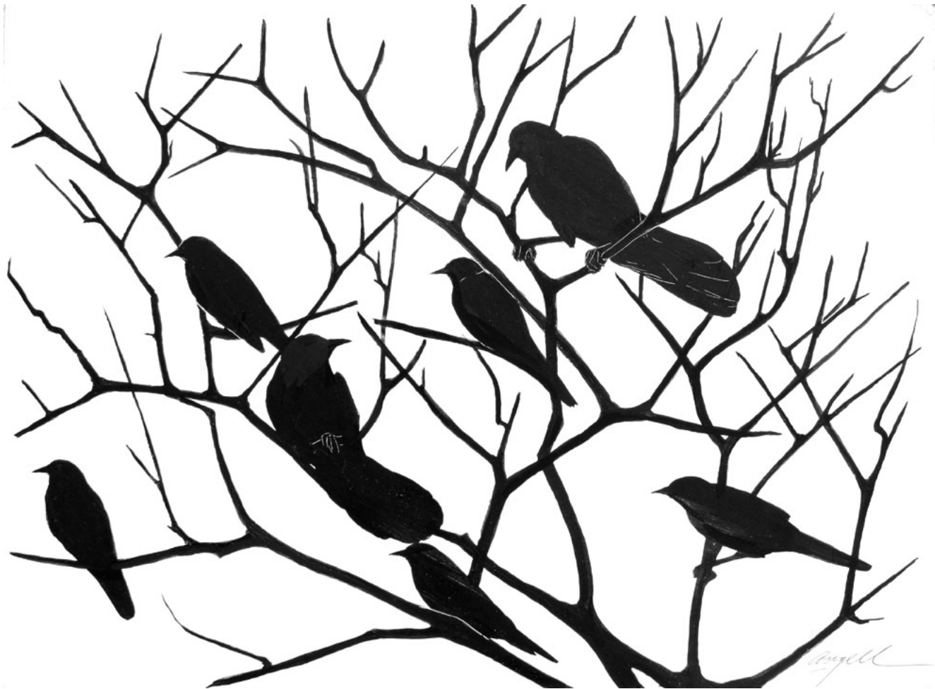 Grackles at the Roost